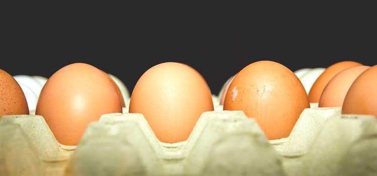 VVVVVEJfood-eggs-85080