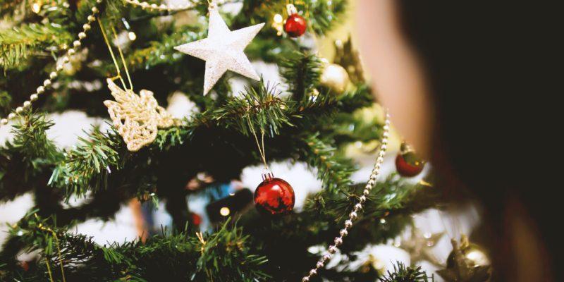 blur-branch-celebration-christmas-230742