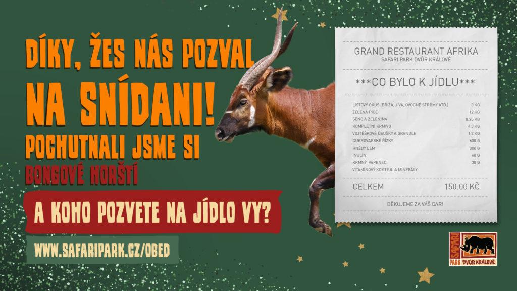 safaripark_certifikát_vanoce_bongo_1920x1080px_1_0_muz